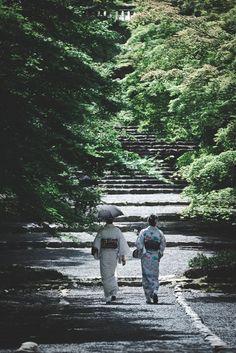 Early Summer in Kyoto, Japan   Yasuhiko Yarimizu 初夏の彩り