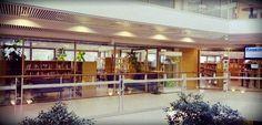 Leppävaaran Laurea-kirjaston sisäikkunat pestiin viime viikolla, nyt kirjasto loistaa valoa hämärään käytävään.