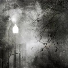 To Walk at Night Photographic Print by Ursula Abresch at Art.com