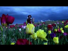 """This is the newest Clip of Thomas Heinz.  It's the official musicvideo for the song called """"Beauty of life"""".    We hope you like it!  http://itunes.apple.com/ch/artist/thomas-heinz/id216083566  or physical  http://www.ths-music.ch/shop.html?language=en    Feel free to comment and rate it! ;-)"""