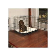 Petco Premium 2-Door Dog Crate, Medium - http://www.thepuppy.org/petco-premium-2-door-dog-crate-medium/