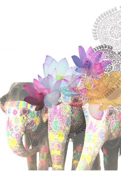 Elephant and flower collage