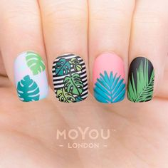 Tropical 29 https://noahxnw.tumblr.com/post/160809236106/hairstyle-ideas