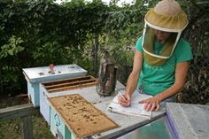"""Resources for beekeepers-    lots of free useful information       click onto """"Free-bees"""" lower right corner"""