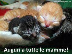 Auguri a tutte le mamme! #FestaDellaMamma
