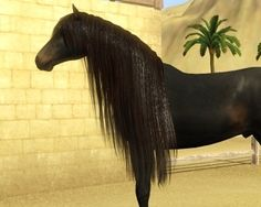 very long mane - by Alastair Schrödinger @ Equus Sims