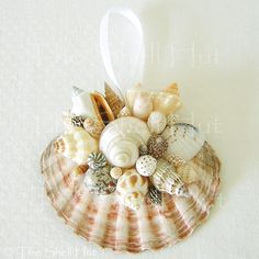 Seashell Christmas Ornaments | Seashell Ornaments | Seashell Christmas Scallop ... | Project School