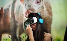 Mit iAnimal hat Animal Equality ein vielbeachtetes Virtual Reality-Projekt geschaffen. Was dahinter steckt, erforscht Penelope Kemekenidou an der Ludwig-Maximilians-Universität München. Ein Gastbeitrag.