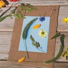 take advantage of a sunny day and do some sun prints