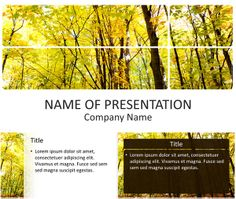 Beautiful PowerPoint Template with a picture of trees in the forest with colorful leaves in fall. Use this theme for presentation on nature, forest, trees, environment, etc. Powerpoint 2010, Picture Tree, Outdoor Activities, Lorem Ipsum, Beautiful Pictures, Presentation, Environment, Trees, Templates