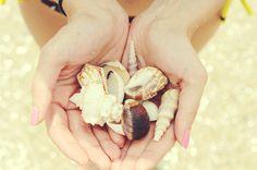 adriatic love. #adriatic #dubrovnik #seashells