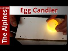 Poultry Egg Candler - Low cost - Easy Build