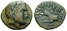 This coin comes from Karthaea on the island of Keos ,Cyclades 3rd century BC.On the obverse the head of Apollo is shown crowned with a laurel wreath.On the reverse a dog is depicted with rays emanating from its head,representing the Dog Star. The legend reads ΚΑΡΘΑΣΑ. The images depicted are associated with an ancient local cult that sacrificed to Zeus and to the Dog Star so that the Etesian winds might blow, bring cooler weather, and ward off disease