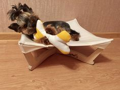 Dog Hammock, Pet Furniture, Dog Bed, Yorkie, Small Dogs, Funny Animals, Color Schemes, Halloween, Cats