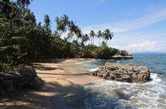 gandoca manzanillo wildlife refuge playa blanca   - Costa Rica