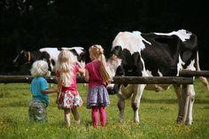 Het betere boeren bed, Landgoed Volenbeek, Ermelo