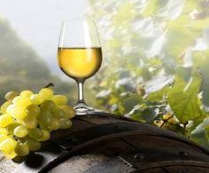 sato, hedelmät, syksy, viini