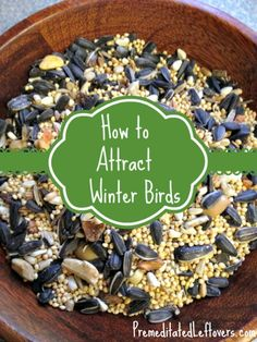 Tips for Attracting Winter Birds from premeditatedleftovers.com.