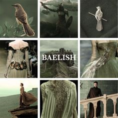 House Baelish lords of the Fingers, sworn to ArrynHouse Baelish of the Vale is a young nobel house, their seat is an unnamed and an old flint tower which commands no more than a few stony acres on the smallest of the Fingers. House Baelish's smallfolk consists of a village of a dozen families in huts of piled stone beside a peat bog. The current lord, Petyr Baelish, is only the second generation of the landed family. His grandfather had been a landless hedge knight and his father the…