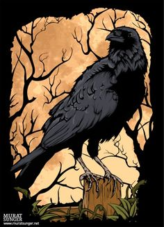 crow or raven?  I just like the artwork and contrasting colors.