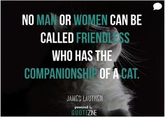 Check out our new article on Cat Quotes: 25 Sayings Only Cat Lovers will Understand