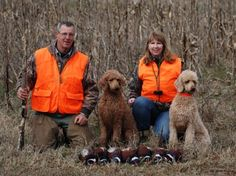Hunting with our Poodles