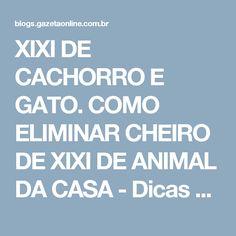 XIXI DE CACHORRO E GATO. COMO ELIMINAR CHEIRO DE XIXI DE ANIMAL DA CASA - Dicas da Lucy