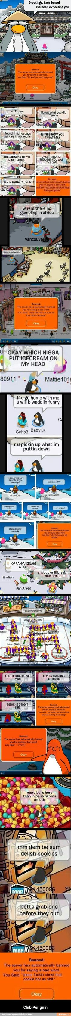 "All Club Penguin in one pic. shit I just got banned 'cause sayin' ""Club Penguin"" Club Penguin Funny, Funny Club, Tumblr Funny, Funny Memes, Hilarious, Jokes, Really Funny, The Funny, Funny Posts"