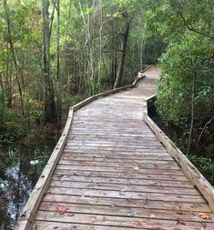 Palm Coast in Flagler County FL has many parks and preserve with all kinds of trails!