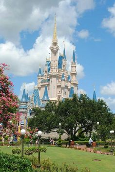 beautiful Disney World. I could photograph this place all day