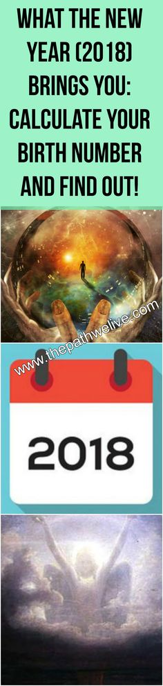 #2018 #birth #number #calculate #health #life #expectations #predictions #meaning #symbol