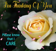 Show how much you think of him/ her with this romantic ecard. Free online Please Know That I Care ecards on Everyday Cards Morning Hugs, Morning Wish, Healing Wish, Really Sorry, Wishes For You, Get Well Cards, I Care, Name Cards, Card Sizes