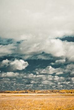 prairie sky... imagine seeing open land you still had to cross for months