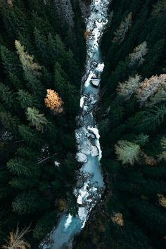 "Mr. Green, j-k-i-ng: ""Bellwald Switzerland"" by 