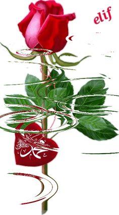 Juma Mubarak Pictures, Best Islamic Images, Good Morning Msg, Jumma Mubarak Images, Allah Calligraphy, Islamic Wallpaper, Beautiful Nature Wallpaper, Madina, Prophet Muhammad