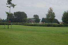 Typisch Hollands landschap met grijze luchten, groene weides en gevlekte koetjes. Locatie: Asten. Foto: Ron Willems.