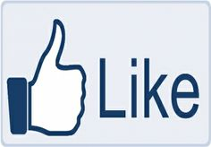 give you 1000 REAL Facebook Likes for $10