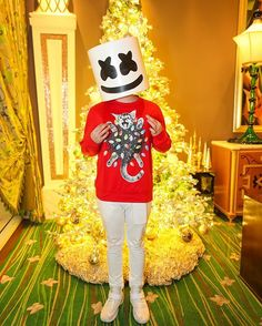 Christmas is almost here ☃️:)))))))) Alan Walker, Family Costumes, Halloween Costumes For Kids, Halloween 2018, K Pop, Marshmello Wallpapers, Nothing But The Beat, Marshmello Dj, Dj Electro
