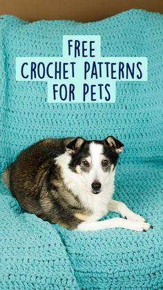 Crochet Dog Sweater Free Pattern, Crochet Pet, Crochet Quilt, All Free Crochet, Crochet Home, Crochet Gifts, Crochet Animals, Crochet Ideas, Crochet Stitches