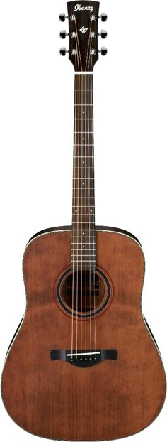Ibanez AW250RTB Acoustic Guitar