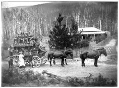 Cobb and Co. coach and horses outside Harcourt,Warburton in Victoria (year unknown). Old Pictures, Old Photos, Vintage Photos, Random Pictures, Vintage Stuff, Vintage Photographs, Melbourne Victoria, Victoria Australia, Colonial Cottage