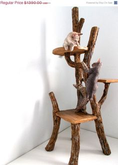 Cat tree - way too much shelac for me but I like the idea.