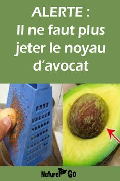 ALERTE : Il ne faut plus jeter le noyau d'avocat ALERT: Do not discard the avocado pit anymore Avocado Popsicles, Healthy Cooking, Healthy Recipes, Health And Wellness, Health Fitness, Nutrition, Best Fruits, Arabic Food, Natural Life