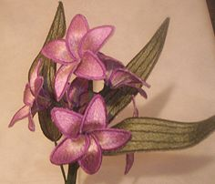 "Frangapina 3 Flower6.11"" x 4.76"""
