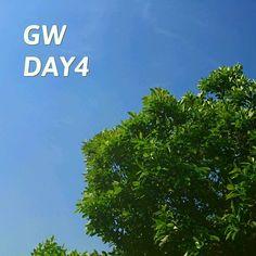 今日はお疲れ養生モード #GW