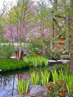 Beautiful Modern Japanese Garden Landscape Ideas – Decorating Ideas - Home Decor Ideas and Tips Modern Japanese Garden, Japanese Garden Landscape, Japanese Design, Garden Pond Design, Landscape Design, Eastern Redbud, Water Features In The Garden, Traditional Landscape, Traditional Design