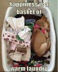 warm laundry <3