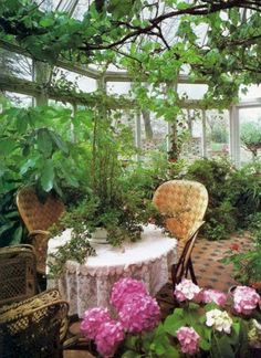 Garden Room: Image By Brian Ferry The Nyt Book Of Interior Design And Decoration 1976 Greenhouse With Wicker Chairs Spring I. Cheap Greenhouse, Greenhouse Plans, Greenhouse Gardening, Indoor Garden, Indoor Plants, Outdoor Gardens, Magic Garden, Gazebos, Spring Garden