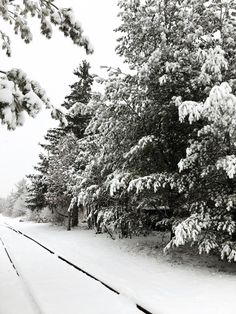 A Canadian Winter Wonderland : The snow-covered train tracks set the perfect scene for a winter themed photo shoot to capture sweater weather in Canada Winter Szenen, Winter Magic, Winter Theme, Winter Wonderland Wallpaper, Wallpaper Winter, Winter Photography, Nature Photography, Canadian Winter, Photoshoot Themes