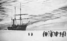 aurora ship mawson - Google zoeken